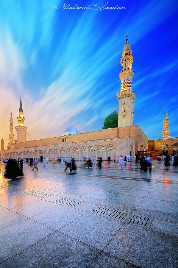 Al Madeena Travels Puttaparthi Contact Number