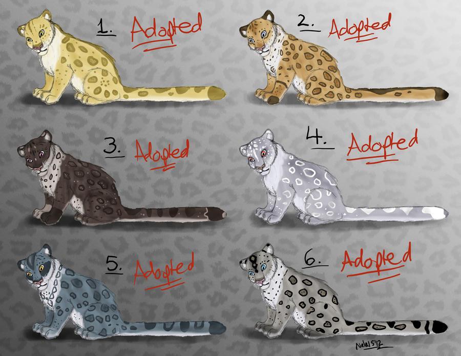 Anthro Snow Leopard Female Female Snow Leopard Point