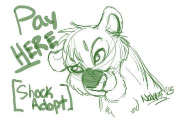 PAY HERE - Shockadopt by Nala15