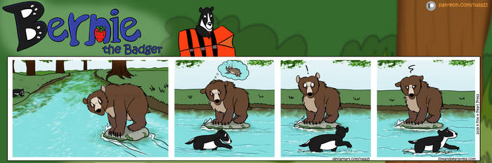 Bernie the Badger #9 - Bear on the River
