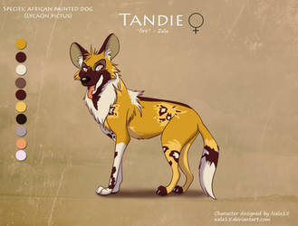 AWD Painted Dog Auction - Adoptable CLOSED by Nala15