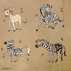 Zebra Adopts - 3/4 OPEN | Price drop! by Nala15