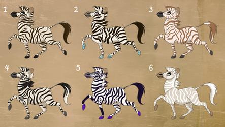 Zebra Adopts - 2/6 OPEN
