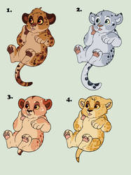 Point Adopts - Spotty Bois 4/4 OPEN