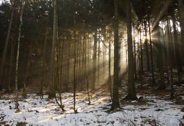 Winter Sunrays by BSOD90