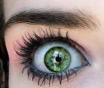 kiwi_eye by neriassonne