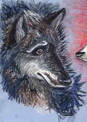 Werewolf Portrait 2, HP WIP by AmberPalette