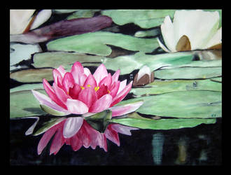 Water Lillies by magritte1221