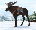 Maned Moose | Traditional Tack