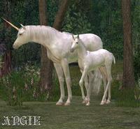 Son of Magic by gothicenchantedangel
