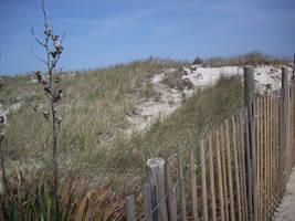 Dunes by Butterscotch25