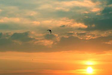 SUNSET STOCK by ArwenArts