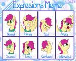 Expressions Meme - Wild Prairie by RuushiiCZ