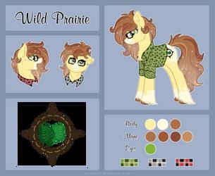 [Ponysona] Wild Prairie by RuushiiCZ
