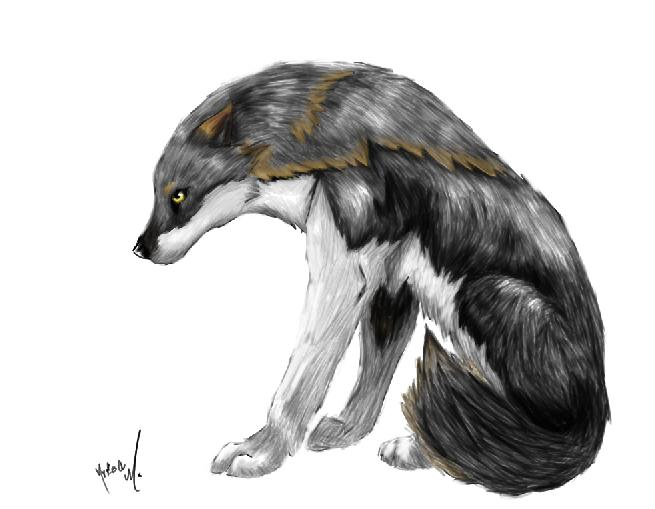 Sam's Cartoon Wolf by AmethystCreatures