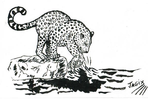 fishing panther