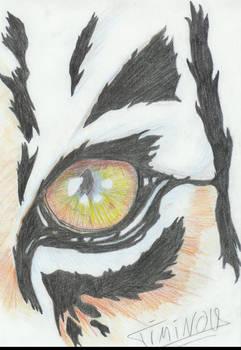 oeil de tigre
