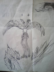 Dual Phoenix