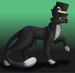 Tuxedo Kitty by bluetheillusion