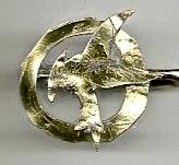 Hunger Games Mockingjay Pin by sing-snap-draw-life