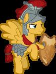 Flash Magnus with Nitidus Shield