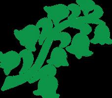 G1 May Lily symbol