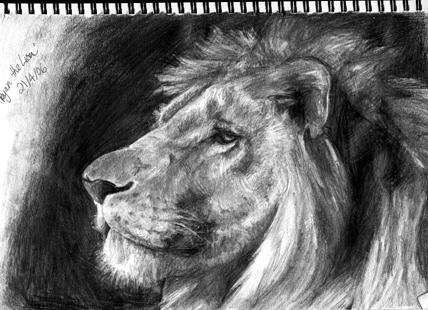 Ryan the Lion by Unmentionables