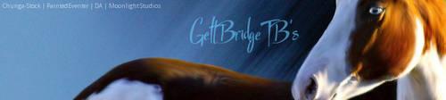 Ellie's Stable Banner by Moonlight-Art-Studio