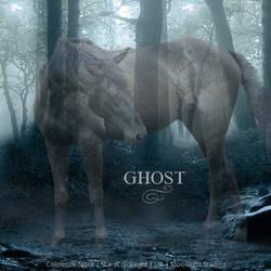 Ghost  - Horse Avatar by Moonlight-Art-Studio
