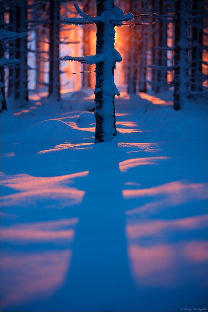 Light cuts the dark by Aphantopus