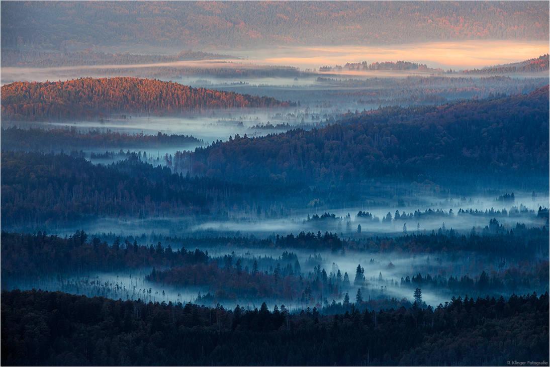 Autumn morning by Aphantopus