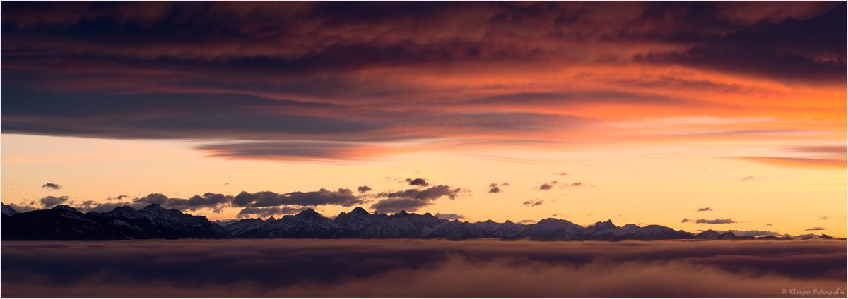 Alps by Aphantopus