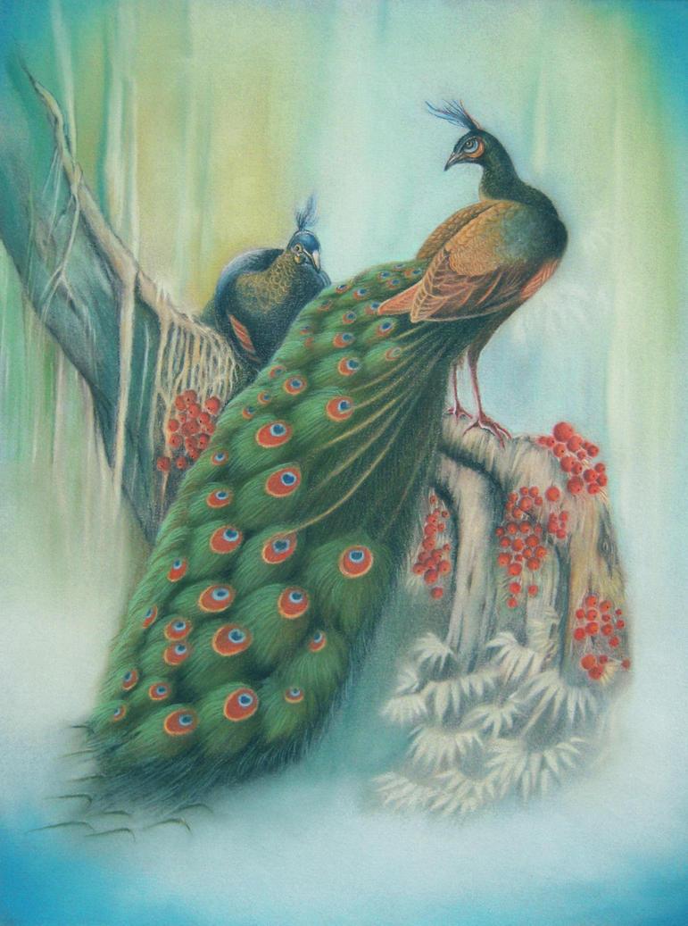 Peacocks by AmaniWarrington