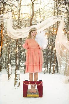 my winter wonderland..