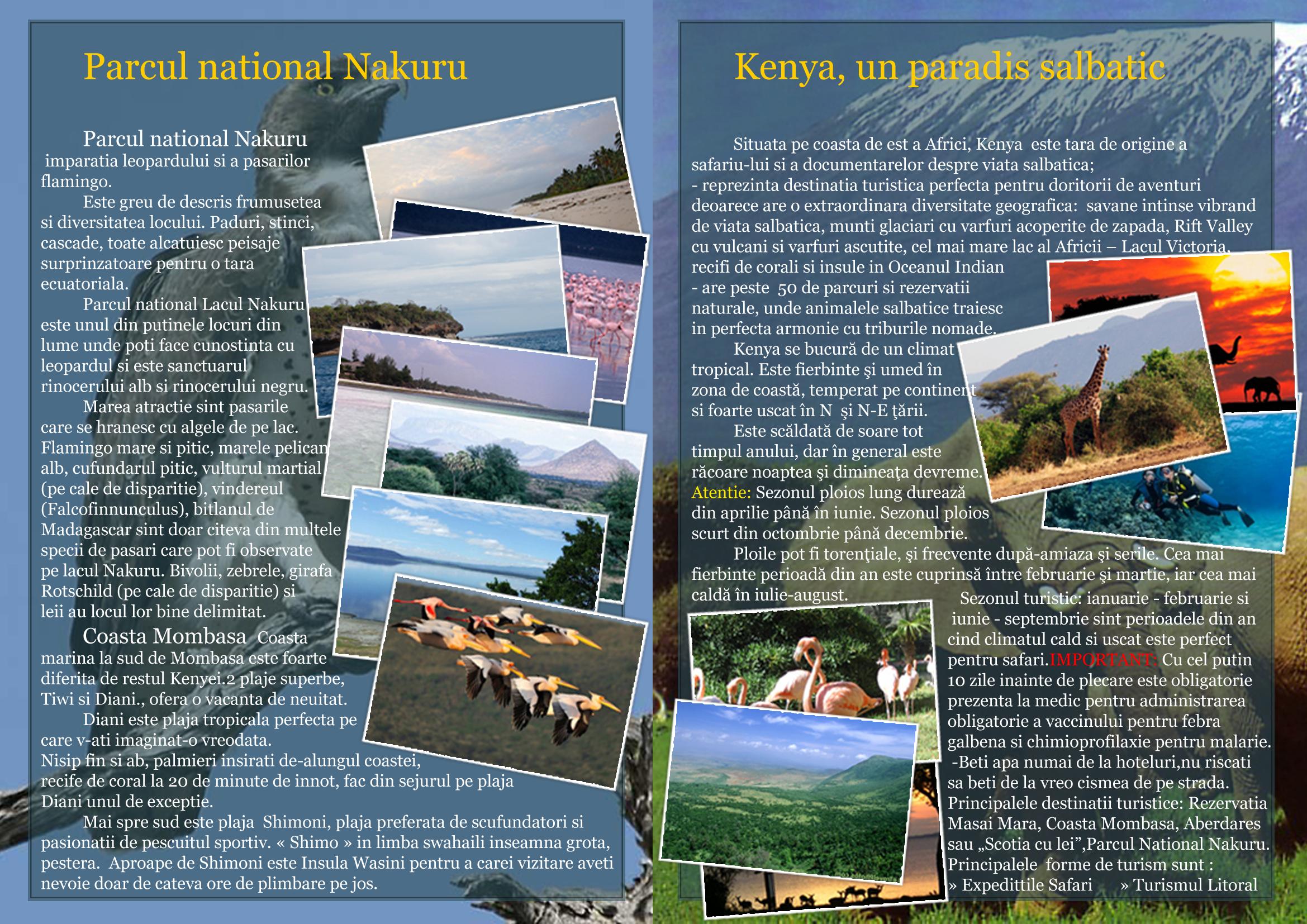Travel Brochure Tour