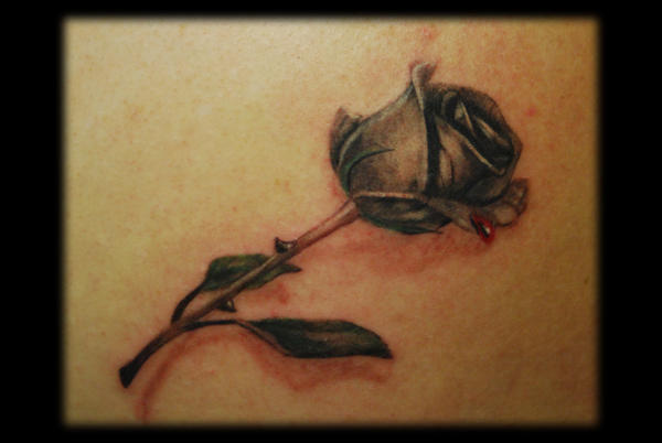 Rose with drop of blood by omedon on deviantart for Blood drop tattoo