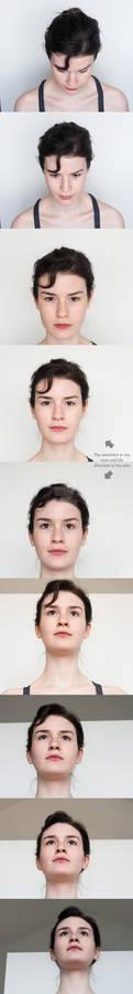 Head Turnaround - Top to Bottom