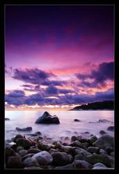 Purplerity by janplexy