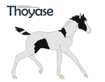 +Thoyase Foal Design 106+ by KesiLegend