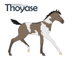 +Thoyase Foal Design 107+ by KesiLegend