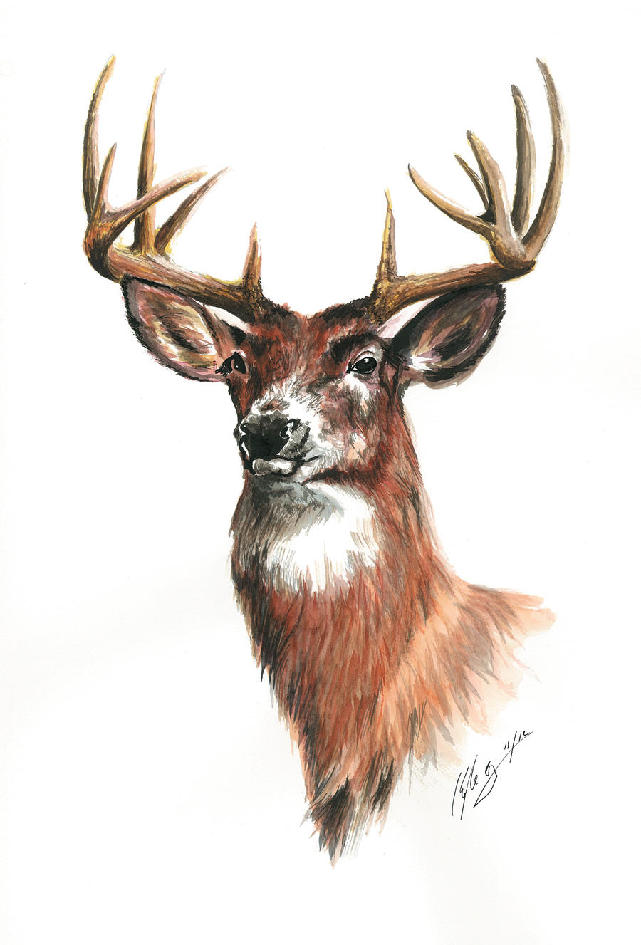 The Only Deer You Get To Hang This Year by Frabulator