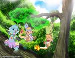 Forest Activities