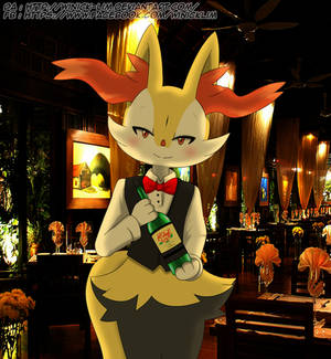 Need A Wine? ( Braixen )
