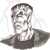 Universal Frankenstein by Crash2014