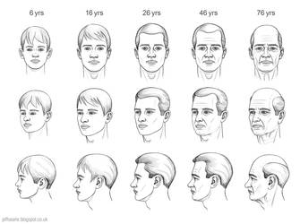 Ageing of the head