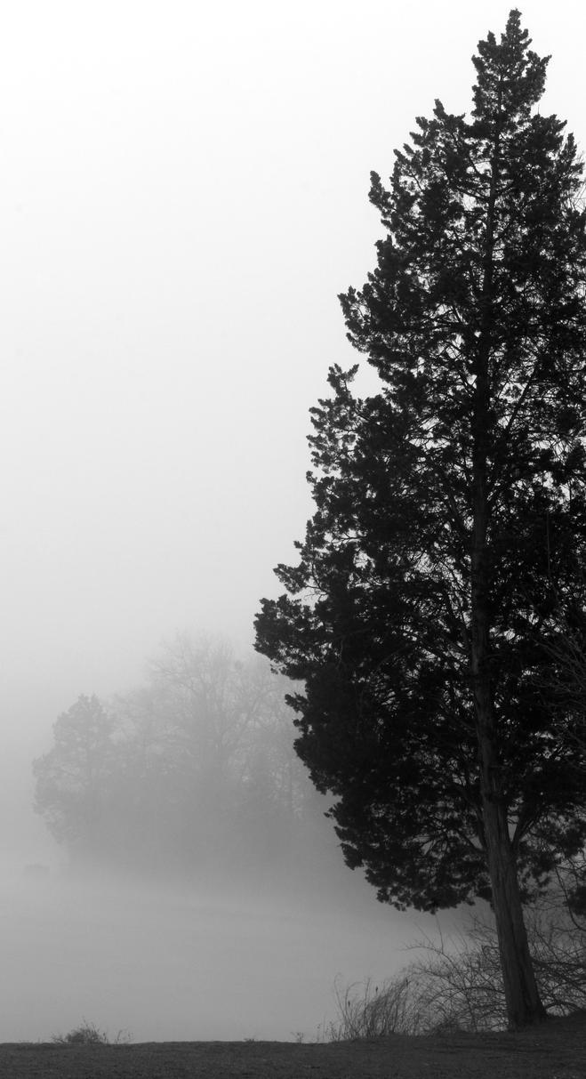 Solitude by ProfilerG