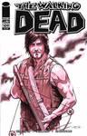 Daryl Dixon Walking Dead cover
