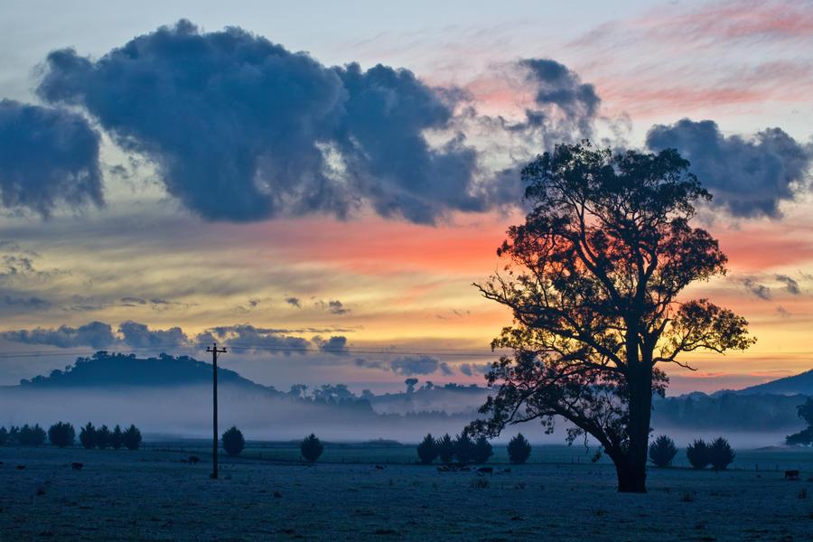 Taggerty Dawn by Bjay70