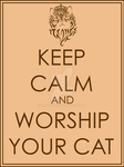 Keep Calm and Worship your Cat