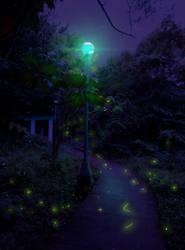 Fireflies by Effieeee